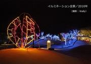 光の並木etc/2010年-3.jpg