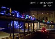 光の並木etc/2010年-4.jpg