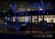 写真集/2008年600-2.jpg